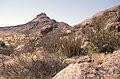 Dunst Namibia Oct 2002 slide117 - Richtung Sassusvlei.jpg