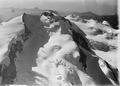 ETH-BIB-Monte Rosa, Grenzgletscher v. N. W. aus 5000 m-Inlandflüge-LBS MH01-001011.tif