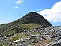 East top of Beinn Bhuidhe - geograph.org.uk - 922189.jpg