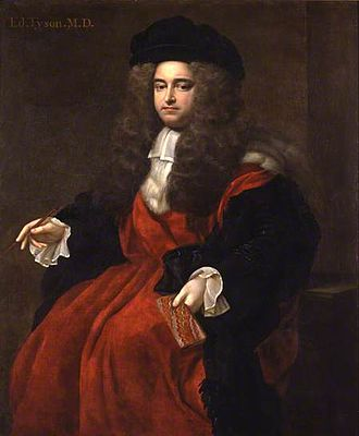 Edward Tyson - Portrait by Edmund Lilly (c. 1695)