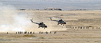 Egyptian Mi-8 Hip helicopters after unloading troops.jpg
