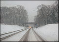 Eindelijk weer eens een dik pak sneeuw. (4238378750).jpg
