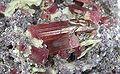 Elbaite-Lepidolite-169755.jpg