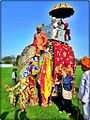 Elephant festival on eve of holi festival in india. - panoramio (1).jpg