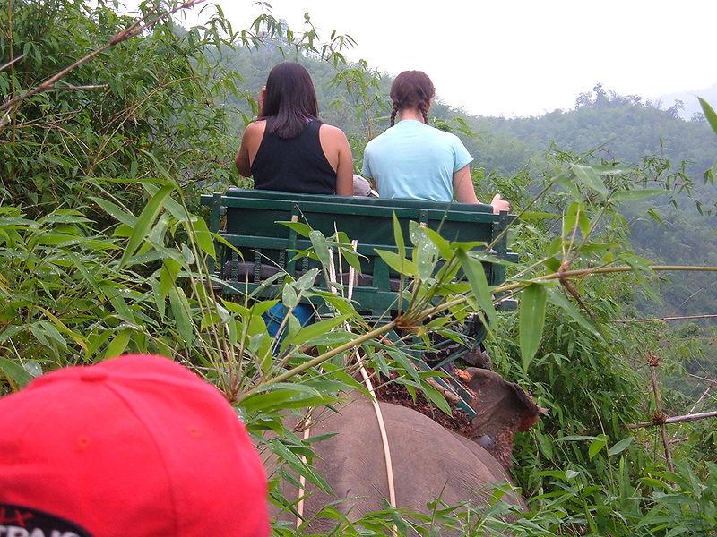 File:Elephant ride in Chiang Rai Province 2007-05 10.JPG