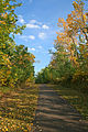 ElkIslandNationalPark-Path10.jpg