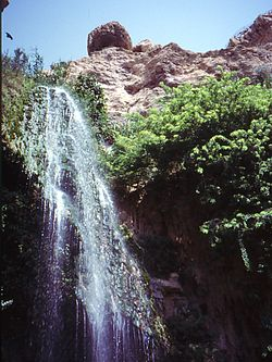 En Gedi Waterfall.jpg