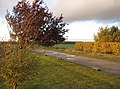 End of the farmtrack - geograph.org.uk - 1036948.jpg