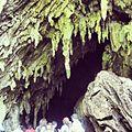 Entrada Parque Nacional El Guácharo.JPG