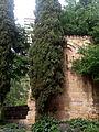 Ermita de San Pelayo y San Isidoro, árbol y ábside, Madrid, España, 2015.jpg