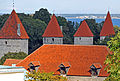 Estonia - Flickr - Jarvis-24.jpg