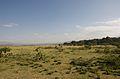 Ethiopian Landscape (5065200261).jpg