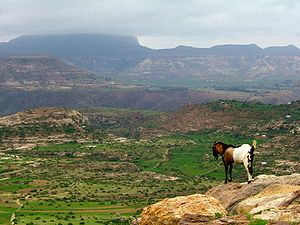 Deforestation in Ethiopia - Image: Ethiopian highlands 01 mod
