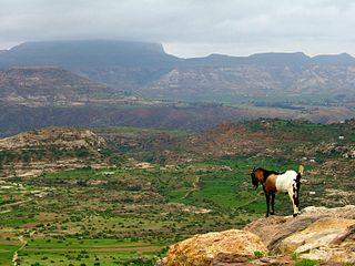 Deforestation in Ethiopia