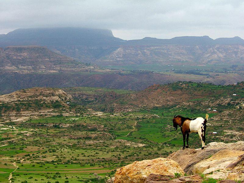 Ethiopian highlands 01 mod.jpg