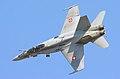 F18 Hornet - RIAT 2006 (2364894518).jpg