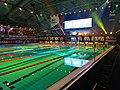 FINA Swimming World Cup Venue Eindhoven.jpg