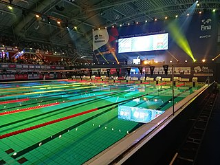 FINA Swimming World Cup international swimming tournament