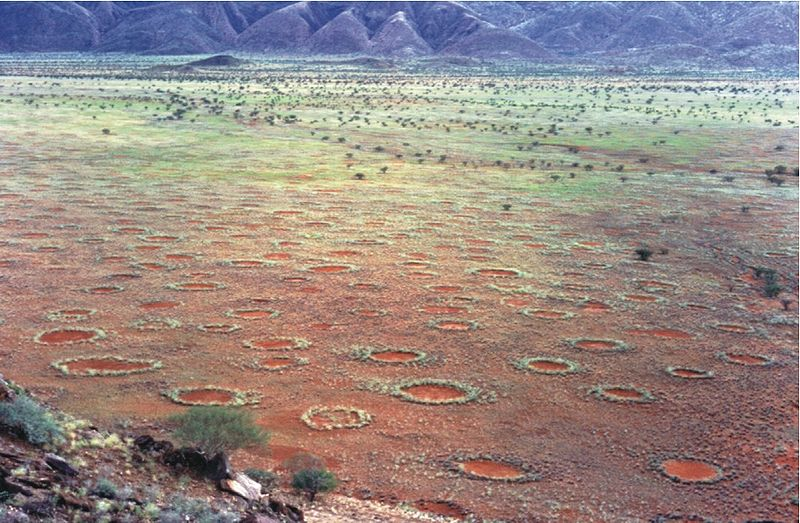 File:Fairy circles namibia.jpg