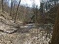 Fall Run Park in Shaler Township, late winter - 28.jpeg