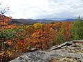 Fall in the Adirondack Mountains.jpg