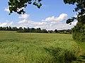 Farmland, Bisham - geograph.org.uk - 856568.jpg