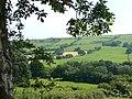 Farmland by the Afon Groes, Ceredigion - geograph.org.uk - 902002.jpg