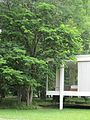 Farnsworth House (5923846654).jpg