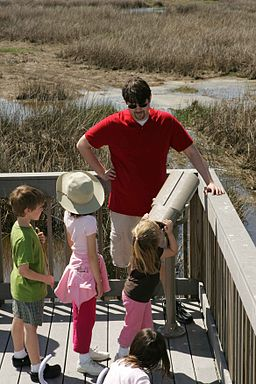 Father with children visiting the nature
