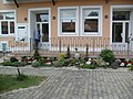 Feketić-Feketics 26.05.2012. - panoramio (10).jpg