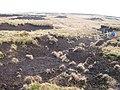 Fence on Gwaun Lydan - geograph.org.uk - 1418541.jpg