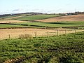 Field Patchwork - geograph.org.uk - 292523.jpg