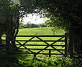 Field and gate - geograph.org.uk - 165803.jpg