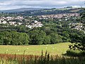 Field and view, Ivybridge (2) - geograph.org.uk - 1411647.jpg