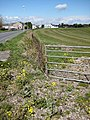 Field edge near Berry Hill Pike - geograph.org.uk - 765583.jpg