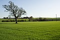 Field near Swithen House - geograph.org.uk - 2348177.jpg