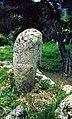 Filitosa. Vue de profil de la statue de Filitosa IX.jpg