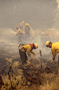 Firefighters in Yellowstone 1988.jpg