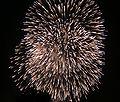 Firework Yokohama July06.jpg