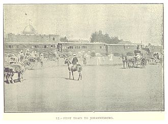 Johannesburg Park Station - First train from Cape Town