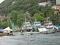 Fishing boats on bosphorus shore - panoramio.jpg