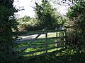 Five bar gate - geograph.org.uk - 588347.jpg