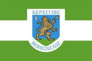 Flag of Berehove/Берегове Beregovo