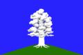 Flag of Dubrovskoe (Ulyanovsk oblast).png