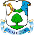 Flag of Polessk.png
