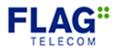 Flag telecom.png