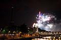 Flickr - Whiternoise - Bastille Day Fireworks, 2010, Paris (7).jpg