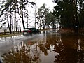 Flood 2010 - panoramio (3).jpg