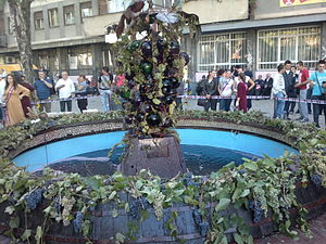 Aleksandrovac - Fountain of vine