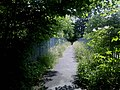 Footbridge over the Railway - geograph.org.uk - 1360813.jpg